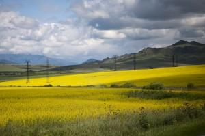 Пейзажи Восточного Казахстана