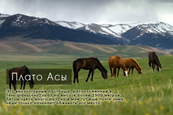Плато Асы, Тянь-Шань, Южный Казахстан