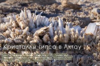 Кристаллы гипса в Актау, Южный Казахстан