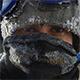 Житин Родион, Поднебесные Зубья, Сибирские Экспедиции