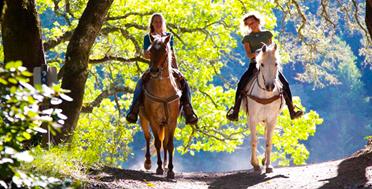 Прогулка на конях по Адыгее