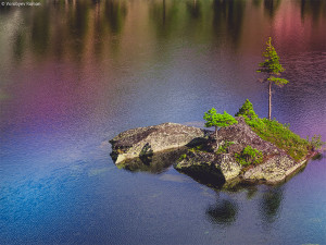Егаки, озеро Художников