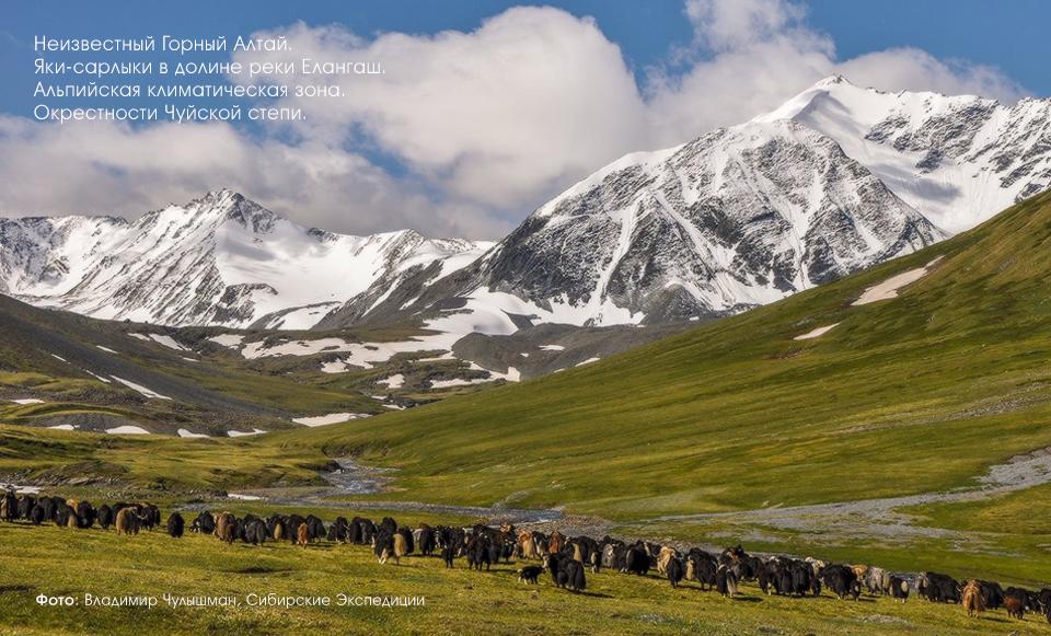 Долина реки Елангаш, Горный Алтай