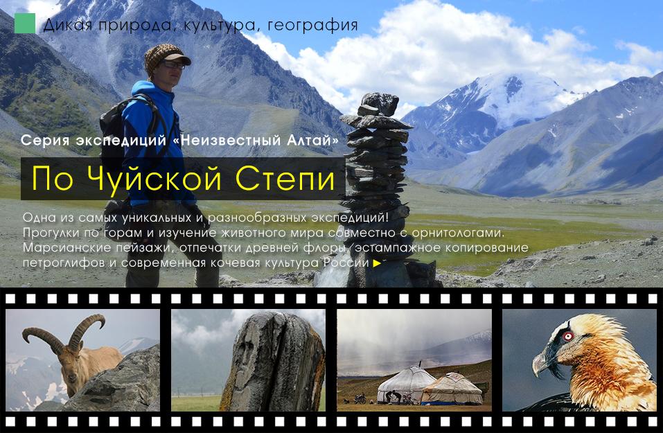 Тур в неизвестный Алтай, по Чуйской степи