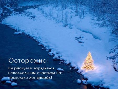new-year-zayavka