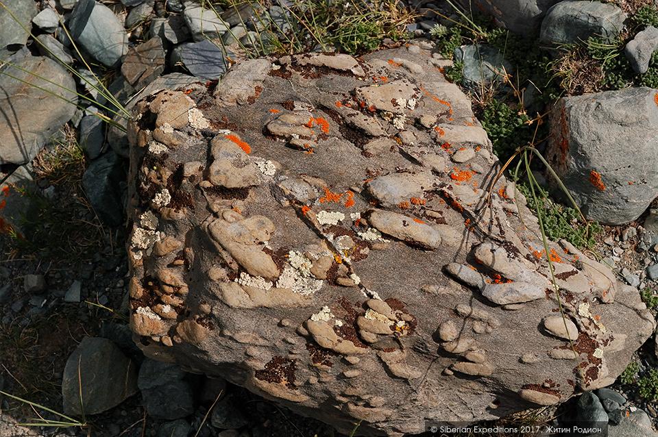 Горный Алтай, Елангаш. Камни