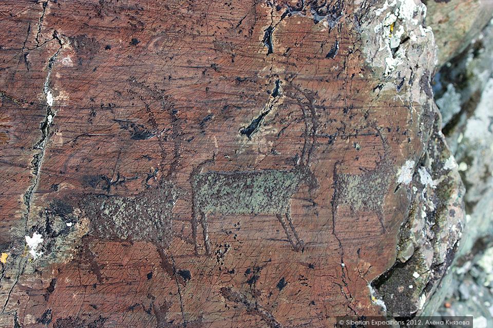 Петроглифы долины Елангаш, Горный Алтай. Козероги, древняя охотничья магия