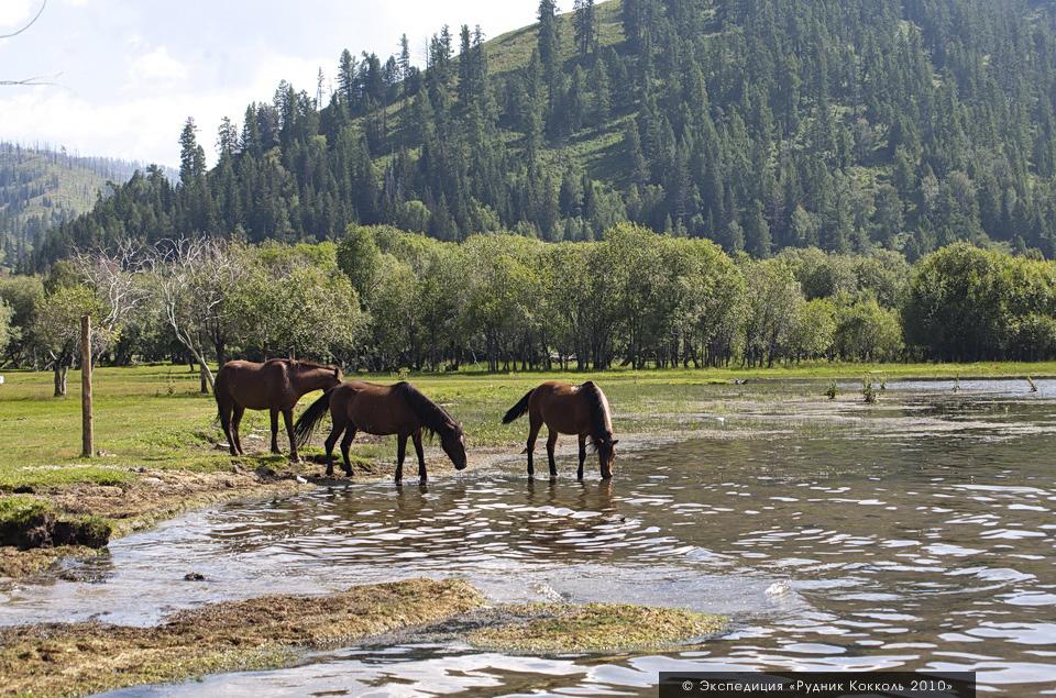 Восточный Казахстан, озеро Маркаколь