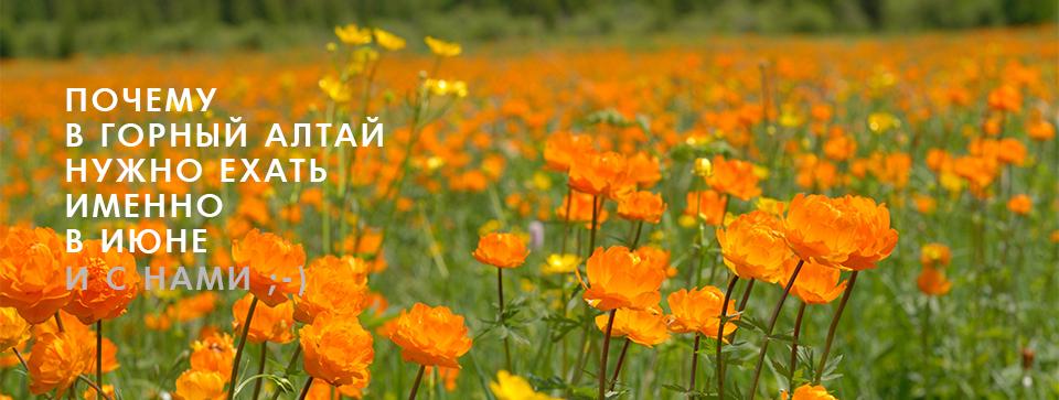 Почему в Горный Алтай нужно ехать именно в июне