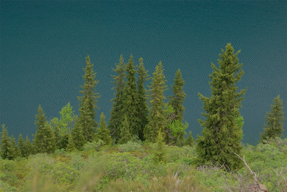 кольсайское озеро, Казахстан