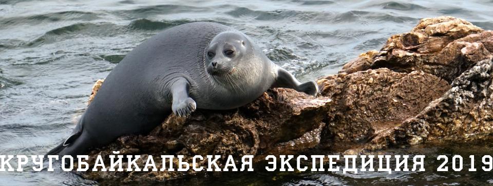 Кругобайкальская экспедиций 2019