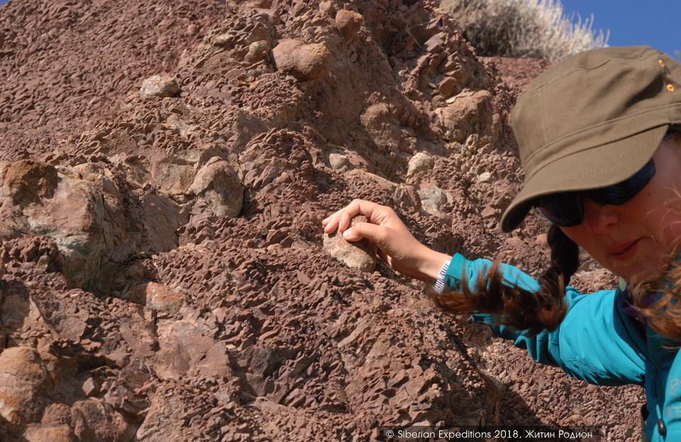 Марсианские пейзажи Алтая, конкреции агатового каньона
