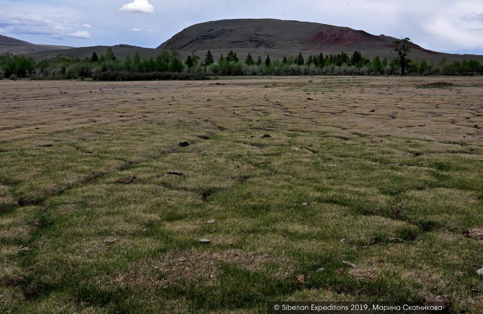 Марсианские пейзажи Алтая, полигональная тундра