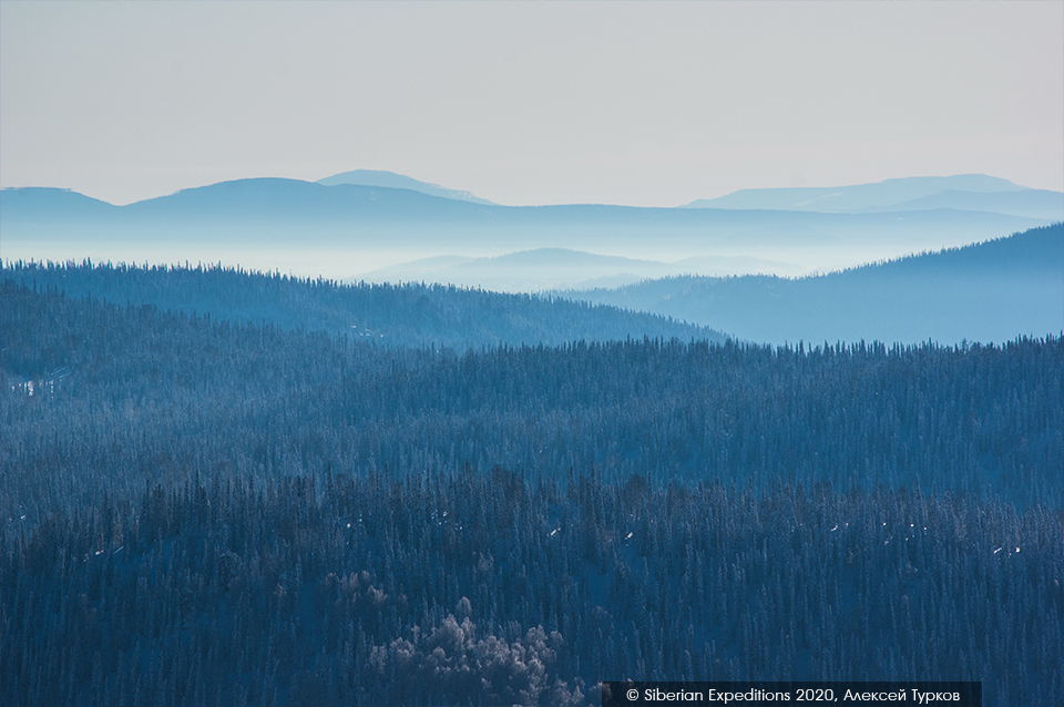 Лыжный тур по Сибири. Вид на сибирскую тайгу